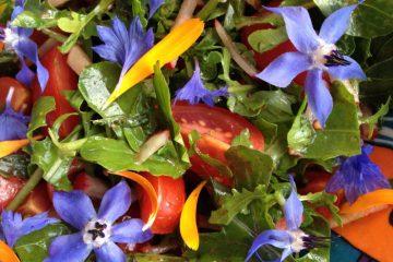 Bloemige tomatensalade